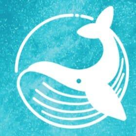 Blue Whale ICO