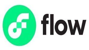 Flow Blockchain ICO